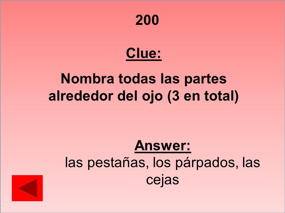 200 Clue: Nombra todas las partes alrededor del ojo (3 en total) Answer: las pestañas, los párpados, las cejas