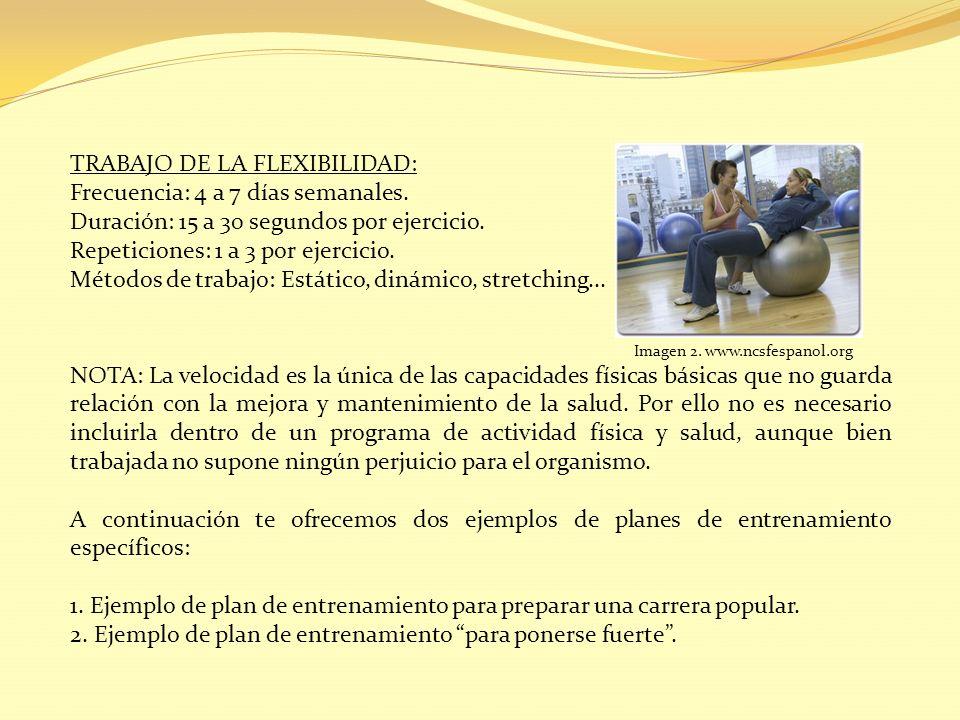 TRABAJO DE LA FLEXIBILIDAD: Frecuencia: 4 a 7 días semanales. Duración: 15 a 30 segundos por ejercicio. Repeticiones: 1 a 3 por ejercicio. Métodos de