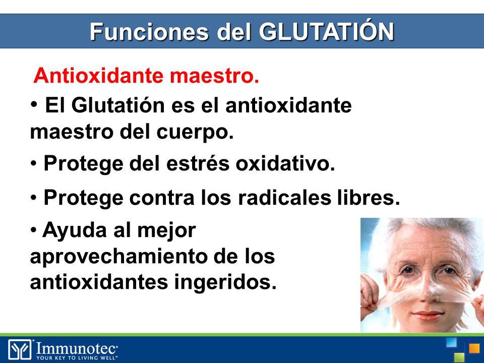 Funciones del GLUTATIÓN Antioxidante maestro. El Glutatión es el antioxidante maestro del cuerpo.