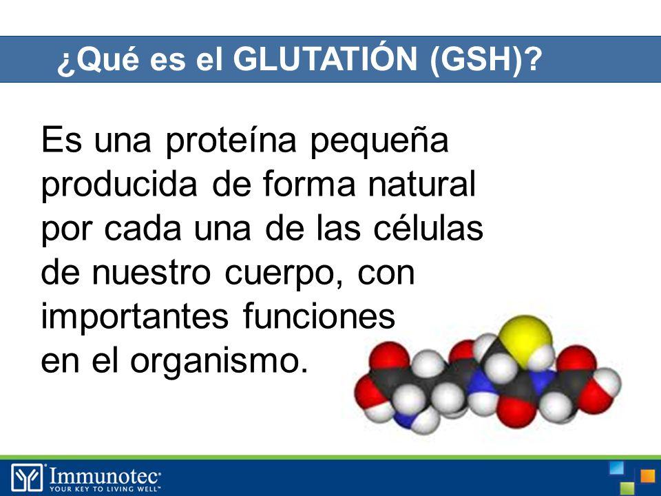 Es una proteína pequeña producida de forma natural por cada una de las células de nuestro cuerpo, con importantes funciones en el organismo.