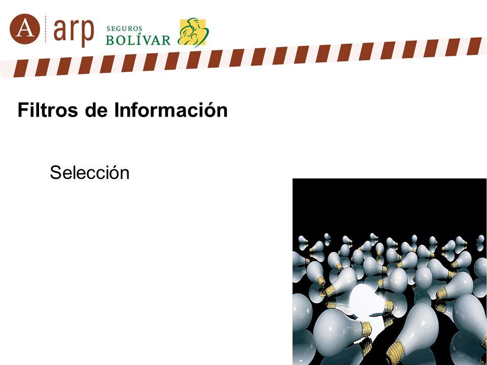 Selección Filtros de Información