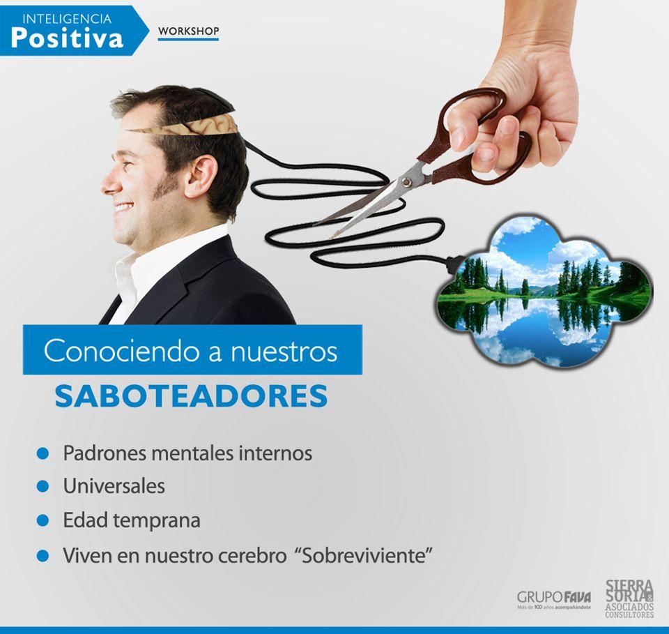 Equipos -Retiros / team building .