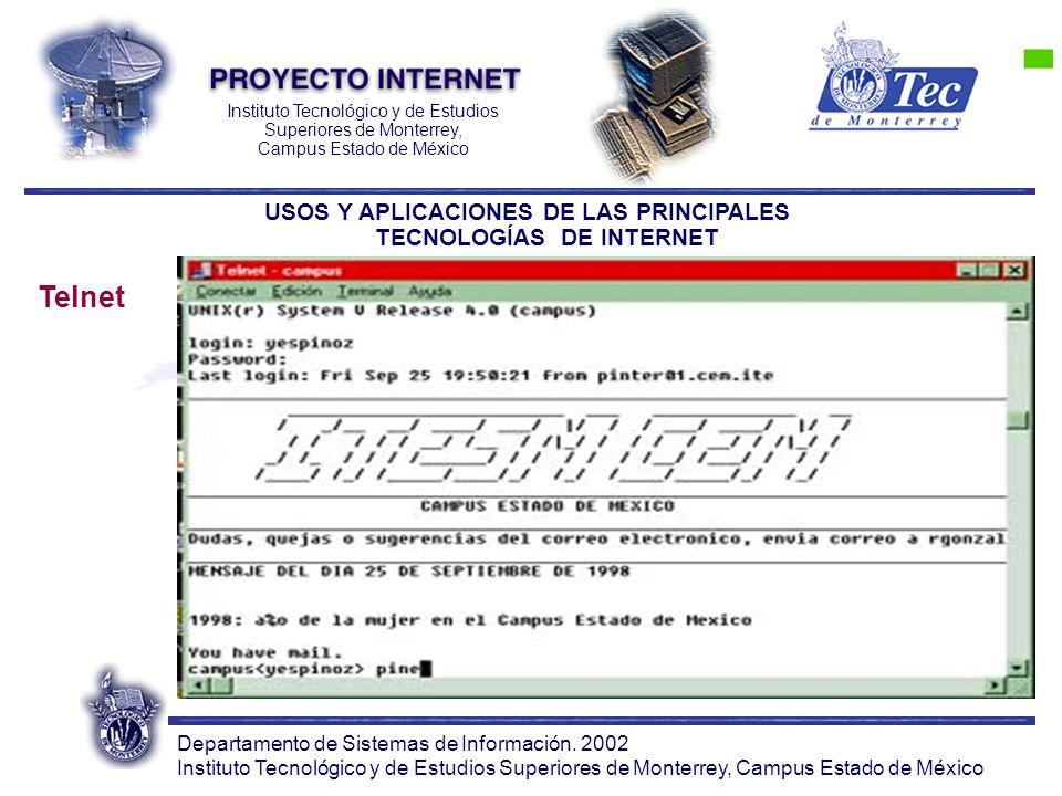 Departamento de Sistemas de Información. 2002 Instituto Tecnológico y de Estudios Superiores de Monterrey, Campus Estado de México Instituto Tecnológi