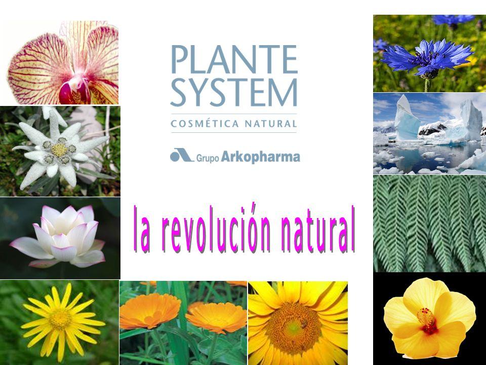 Laboratorio Dermatológico Fito-dermocosmética Investigación y Desarrollo Gama Les Soins BIO: Productos certicados por ECOCERT Greenlife (mínimo un 95% de ingredientes naturales y ausencia de cualquier colorante o perfume sintético).