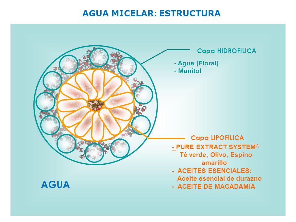 AGUA MICELAR: ESTRUCTURA Capa HIDROFILICA Capa LIPOFILICA AGUA - Agua (Floral) - Manitol - PURE EXTRACT SYSTEM ® Té verde, Olivo, Espino amarillo - AC