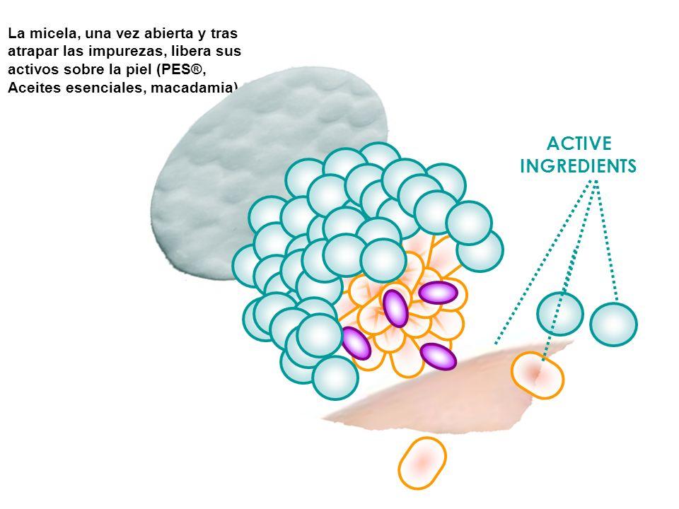 La micela, una vez abierta y tras atrapar las impurezas, libera sus activos sobre la piel (PES®, Aceites esenciales, macadamia) ACTIVE INGREDIENTS