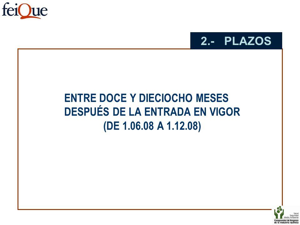 ENTRE DOCE Y DIECIOCHO MESES DESPUÉS DE LA ENTRADA EN VIGOR (DE 1.06.08 A 1.12.08) 2.- PLAZOS