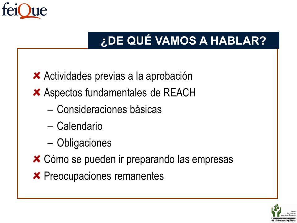Actividades previas a la aprobación Aspectos fundamentales de REACH –Consideraciones básicas –Calendario –Obligaciones Cómo se pueden ir preparando la
