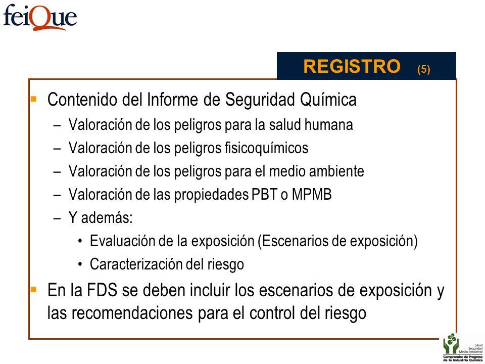 Contenido del Informe de Seguridad Química –Valoración de los peligros para la salud humana –Valoración de los peligros fisicoquímicos –Valoración de