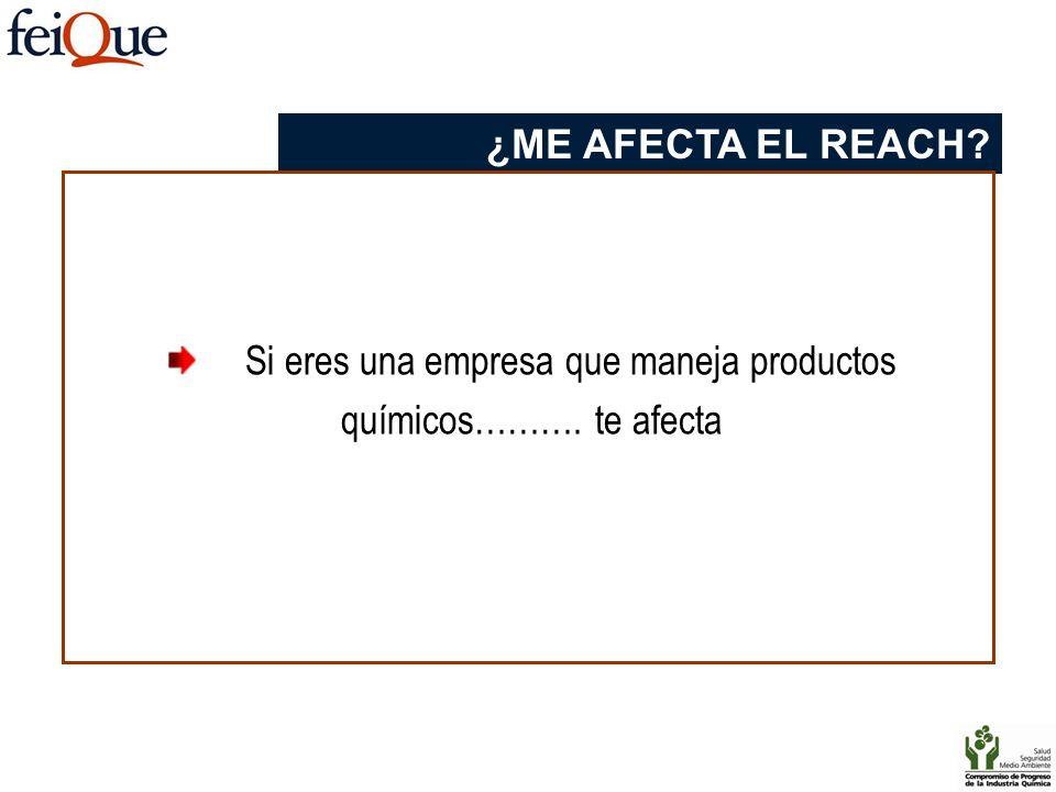 Si eres una empresa que maneja productos químicos………. te afecta ¿ME AFECTA EL REACH?