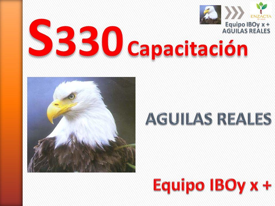 S 330 Capacitación AGUILAS REALES Equipo IBOy x +