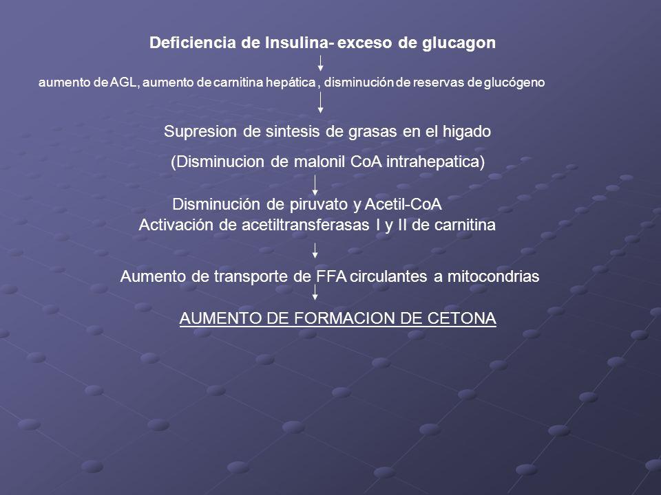 Deficiencia de Insulina- exceso de glucagon aumento de AGL, aumento de carnitina hepática, disminución de reservas de glucógeno Supresion de sintesis