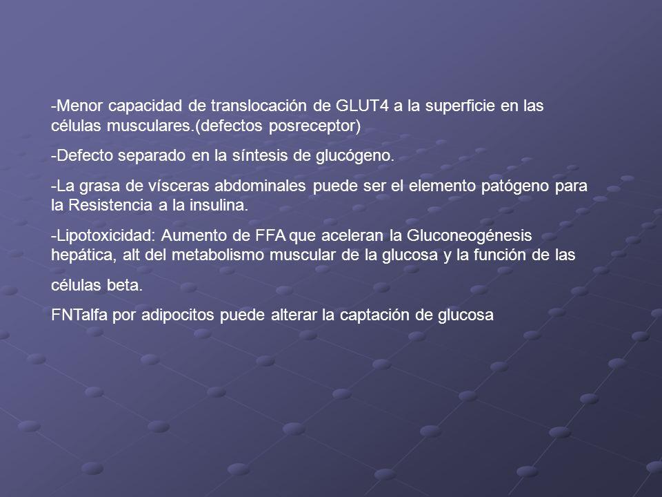 -Menor capacidad de translocación de GLUT4 a la superficie en las células musculares.(defectos posreceptor) -Defecto separado en la síntesis de glucóg