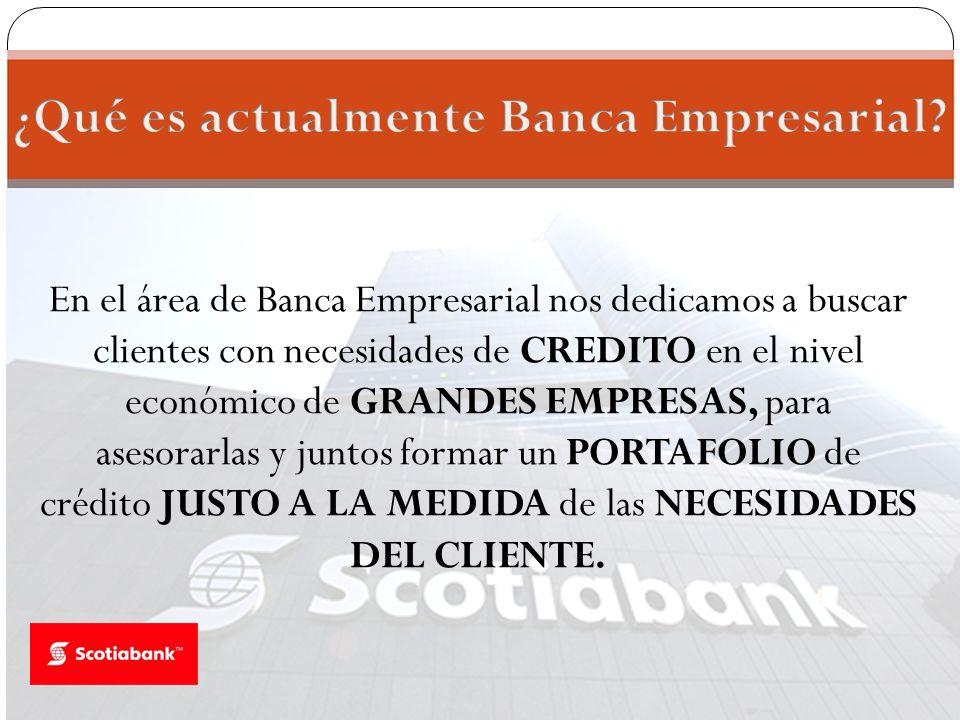 En el área de Banca Empresarial nos dedicamos a buscar clientes con necesidades de CREDITO en el nivel económico de GRANDES EMPRESAS, para asesorarlas