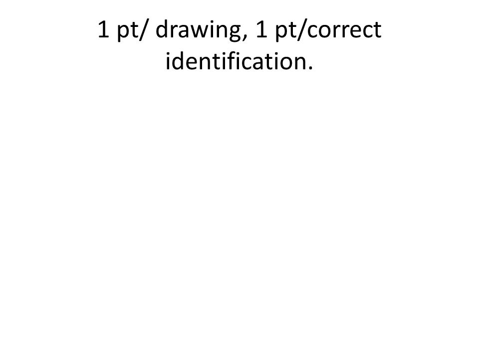 1 pt/ drawing, 1 pt/correct identification.