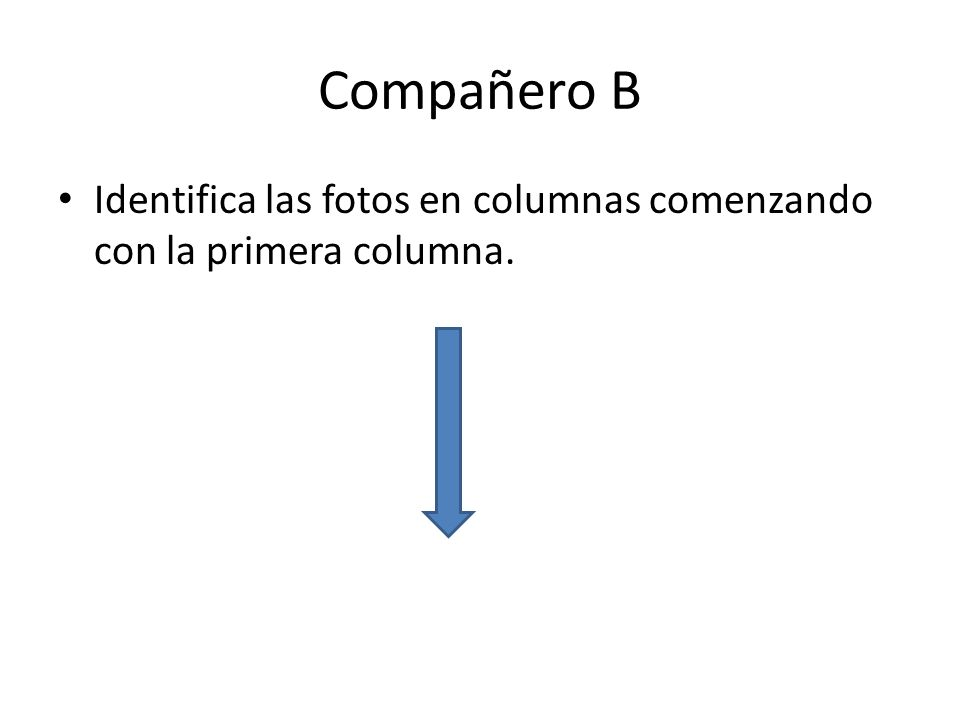 Compañero B Identifica las fotos en columnas comenzando con la primera columna.