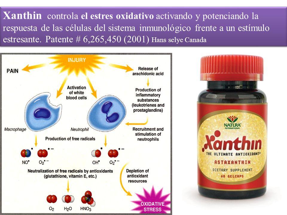 Xanthin controla el estres oxidativo activando y potenciando la respuesta de las células del sistema inmunológico frente a un estímulo estresante. Pat