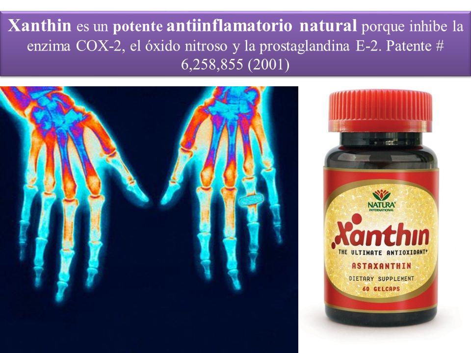 Xanthin es un potente antiinflamatorio natural porque inhibe la enzima COX-2, el óxido nitroso y la prostaglandina E-2. Patente # 6,258,855 (2001)