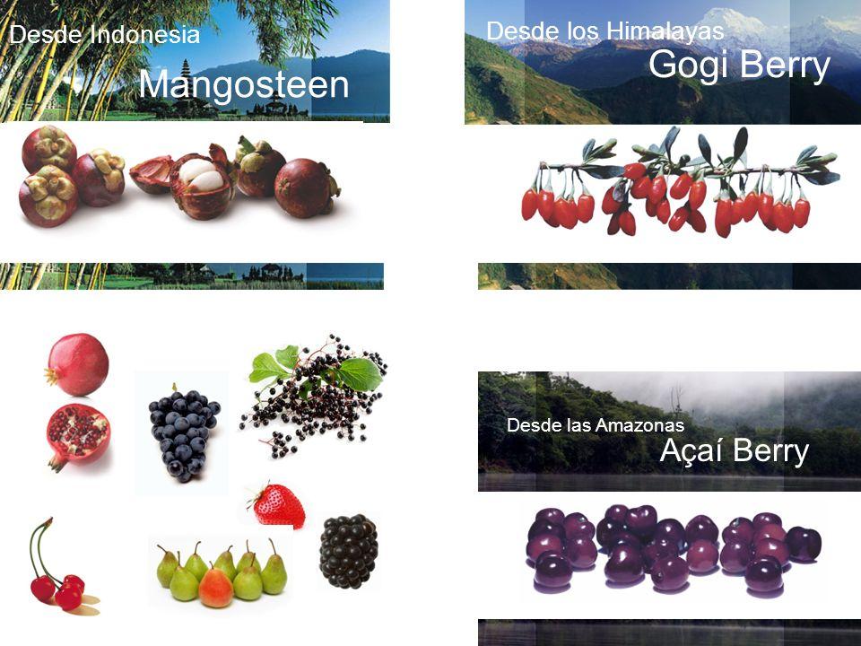 Desde las Amazonas Açaí Berry Desde Indonesia Mangosteen Desde los Himalayas Gogi Berry