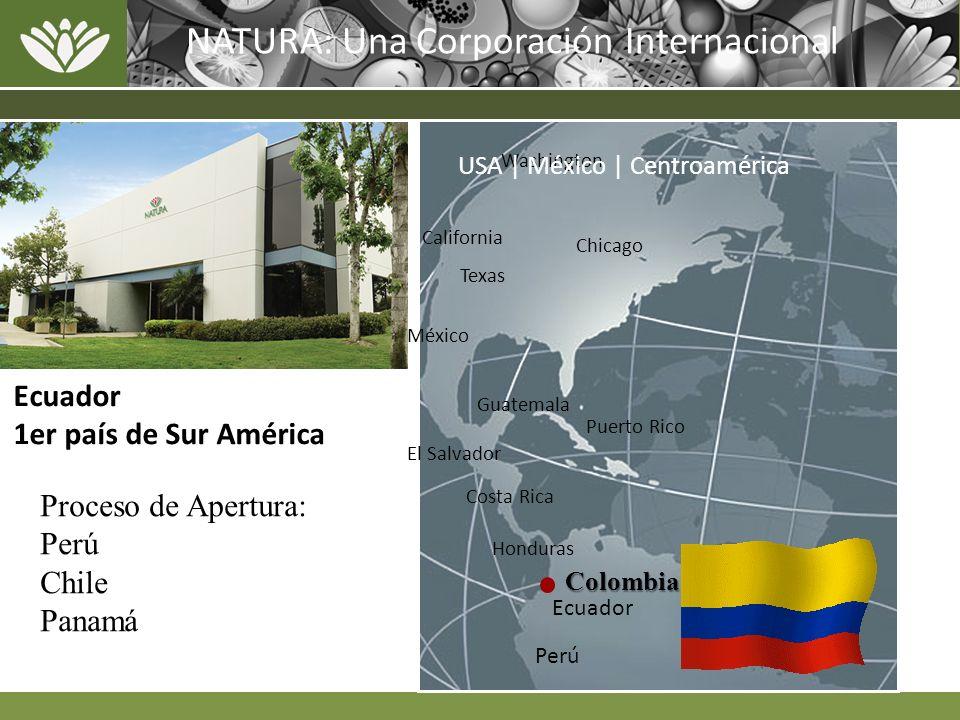 Washington California Chicago Texas México Puerto Rico Guatemala Honduras Costa Rica El Salvador USA | México | Centroamérica NATURA: Una Corporación