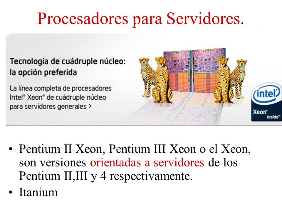 Procesadores para Servidores. Pentium II Xeon, Pentium III Xeon o el Xeon, son versiones orientadas a servidores de los Pentium II,III y 4 respectivam