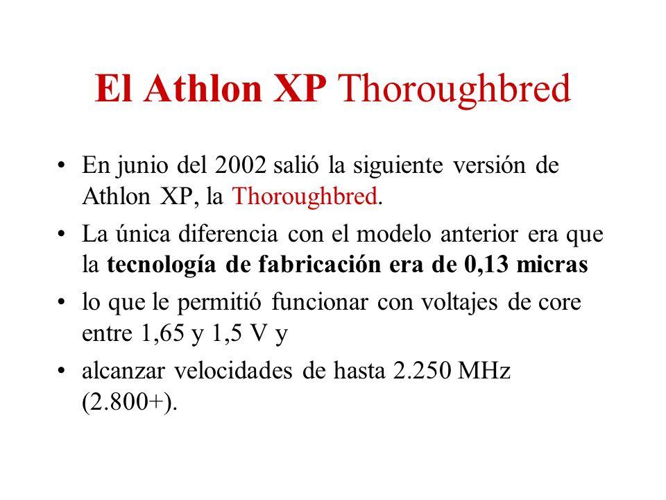 El Athlon XP Thoroughbred En junio del 2002 salió la siguiente versión de Athlon XP, la Thoroughbred. La única diferencia con el modelo anterior era q