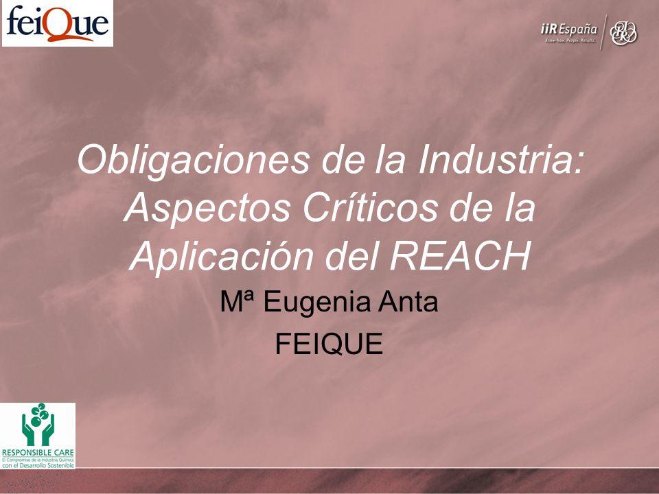Obligaciones de la Industria: Aspectos Críticos de la Aplicación del REACH Mª Eugenia Anta FEIQUE