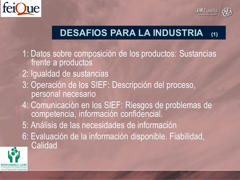 1: Datos sobre composición de los productos: Sustancias frente a productos 2: Igualdad de sustancias 3: Operación de los SIEF: Descripción del proceso, personal necesario 4: Comunicación en los SIEF: Riesgos de problemas de competencia, información confidencial.