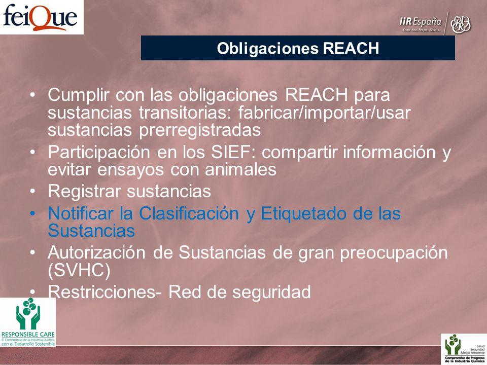 Cumplir con las obligaciones REACH para sustancias transitorias: fabricar/importar/usar sustancias prerregistradas Participación en los SIEF: compartir información y evitar ensayos con animales Registrar sustancias Notificar la Clasificación y Etiquetado de las Sustancias Autorización de Sustancias de gran preocupación (SVHC) Restricciones- Red de seguridad Obligaciones REACH