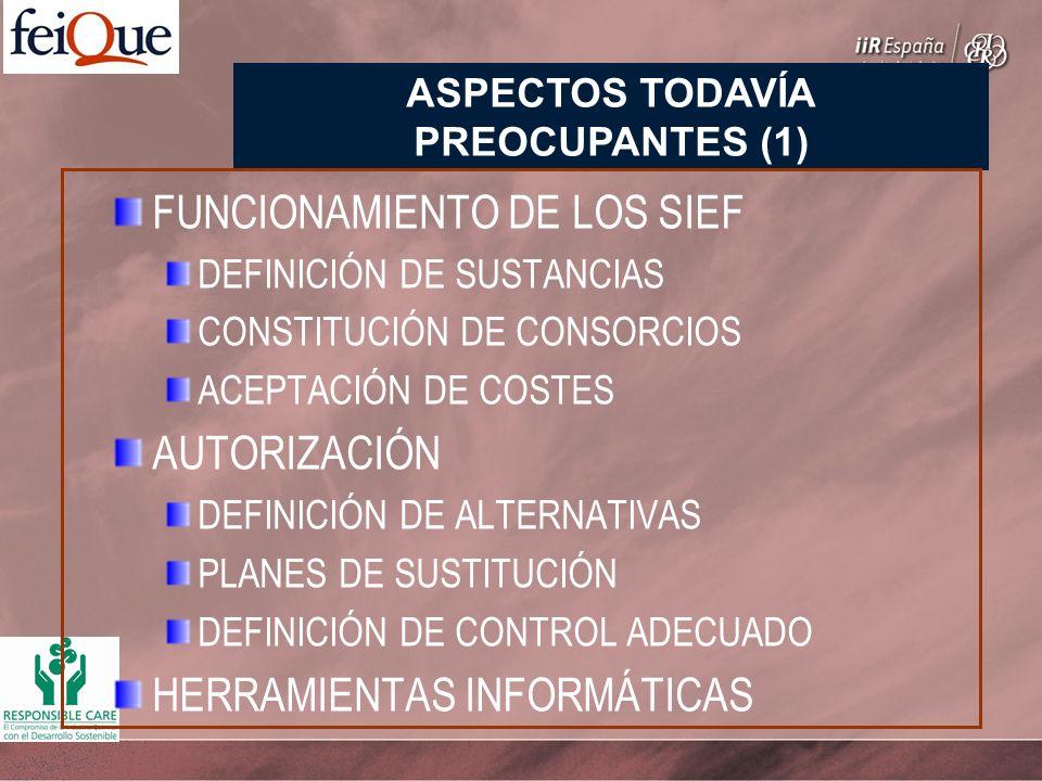 FUNCIONAMIENTO DE LOS SIEF DEFINICIÓN DE SUSTANCIAS CONSTITUCIÓN DE CONSORCIOS ACEPTACIÓN DE COSTES AUTORIZACIÓN DEFINICIÓN DE ALTERNATIVAS PLANES DE SUSTITUCIÓN DEFINICIÓN DE CONTROL ADECUADO HERRAMIENTAS INFORMÁTICAS ASPECTOS TODAVÍA PREOCUPANTES (1)