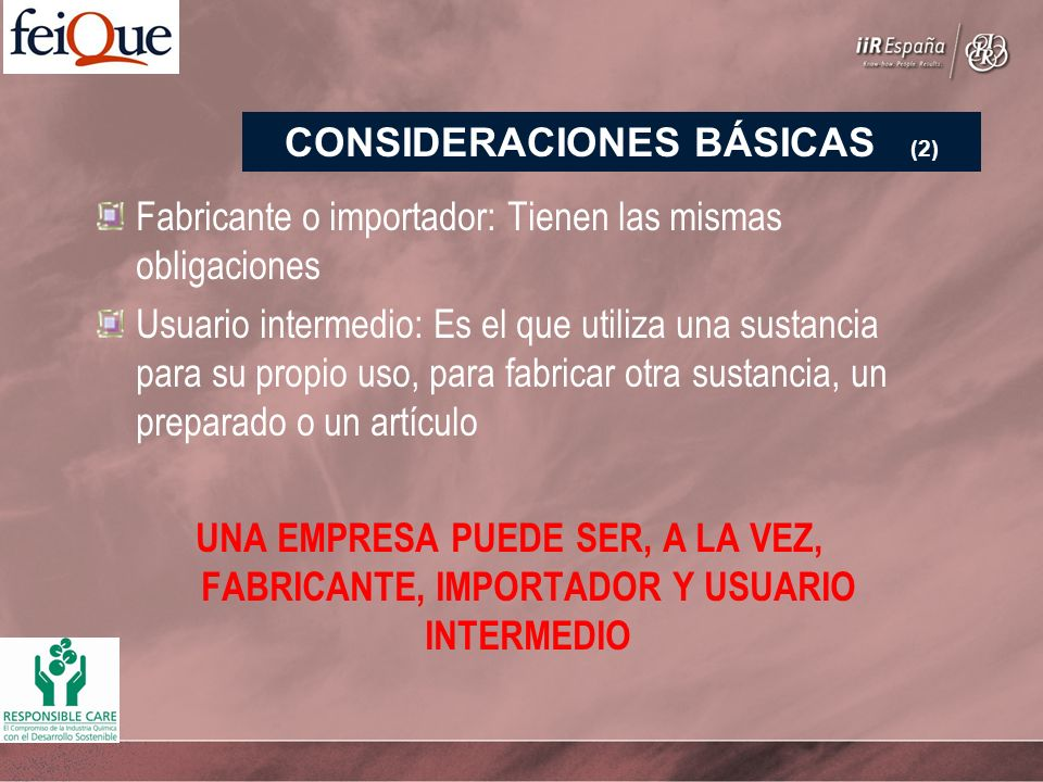 Fabricante o importador: Tienen las mismas obligaciones Usuario intermedio: Es el que utiliza una sustancia para su propio uso, para fabricar otra sustancia, un preparado o un artículo UNA EMPRESA PUEDE SER, A LA VEZ, FABRICANTE, IMPORTADOR Y USUARIO INTERMEDIO CONSIDERACIONES BÁSICAS (2)