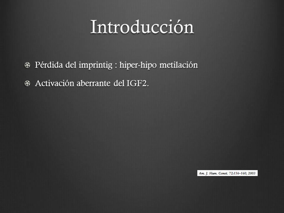 Introducción Pérdida del imprintig : hiper-hipo metilación Activación aberrante del IGF2.