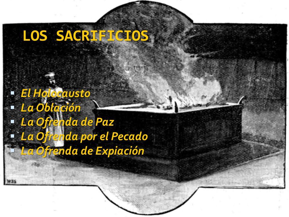 LOS SACRIFICIOS El Holocausto El Holocausto La Oblación La Oblación La Ofrenda de Paz La Ofrenda de Paz La Ofrenda por el Pecado La Ofrenda por el Pec