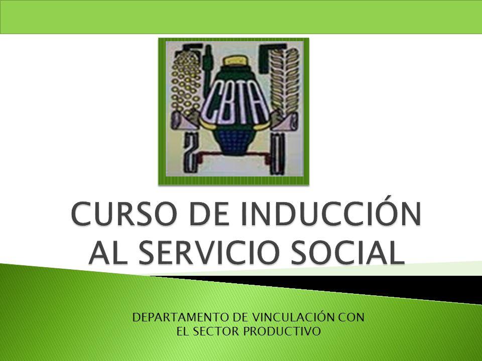 DEPARTAMENTO DE VINCULACIÓN CON EL SECTOR PRODUCTIVO