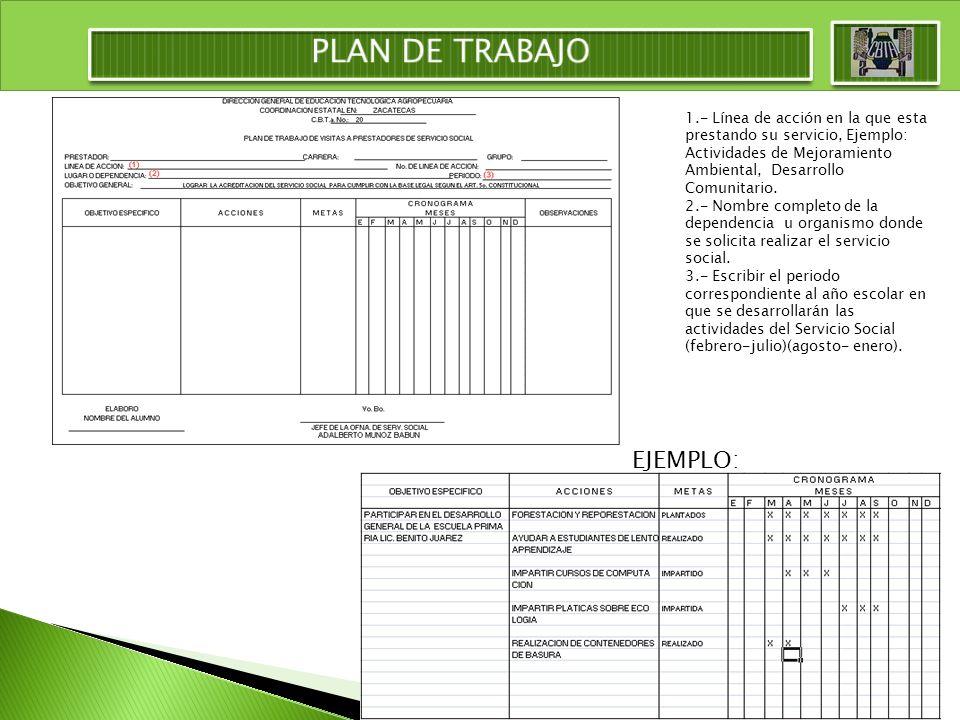 1.- Línea de acción en la que esta prestando su servicio, Ejemplo: Actividades de Mejoramiento Ambiental, Desarrollo Comunitario. 2.- Nombre completo