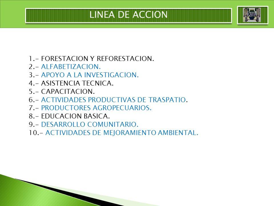 1.- FORESTACION Y REFORESTACION. 2.- ALFABETIZACION. 3.- APOYO A LA INVESTIGACION. 4.- ASISTENCIA TECNICA. 5.- CAPACITACION. 6.- ACTIVIDADES PRODUCTIV