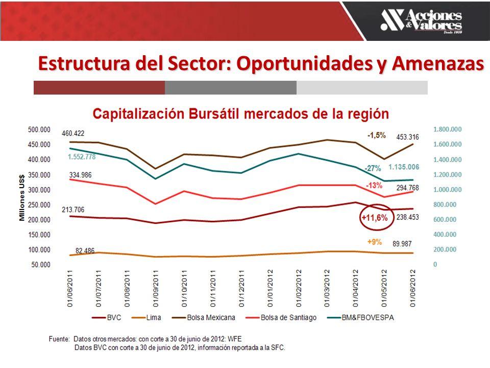 Estructura del Sector: Oportunidades y Amenazas