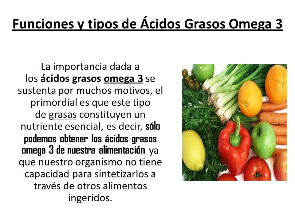La importancia dada a los ácidos grasos omega 3 se sustenta por muchos motivos, el primordial es que este tipo de grasas constituyen un nutriente esen