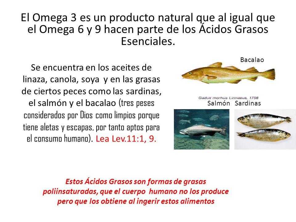 El Omega 3 es un producto natural que al igual que el Omega 6 y 9 hacen parte de los Ácidos Grasos Esenciales. Se encuentra en los aceites de linaza,