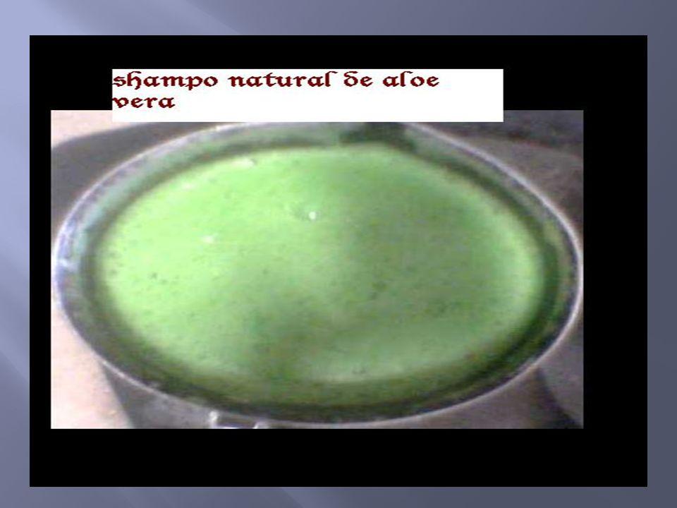 Aplicar los conocimientos de las soluciones en la elaboración del shampo natural de aloe vera Aplicación medicinal del aloe vera Para que utilizan los grandes industrias el aloe vera
