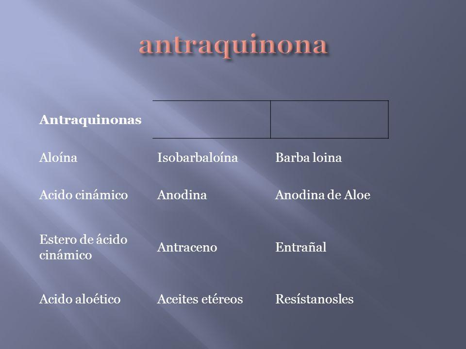 Antraquinonas AloínaIsobarbaloínaBarba loina Acido cinámicoAnodinaAnodina de Aloe Estero de ácido cinámico AntracenoEntrañal Acido aloéticoAceites eté