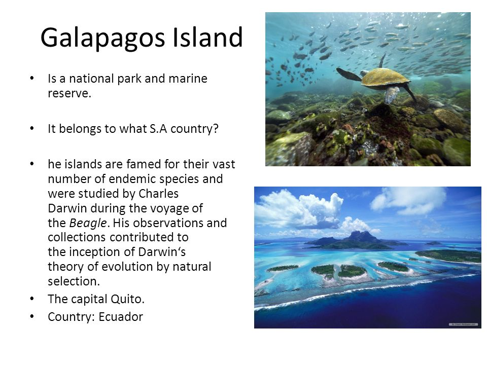 Galapagos Island Is a national park and marine reserve. It belongs to what S.A country? he islands are famed for their vast number of endemic species