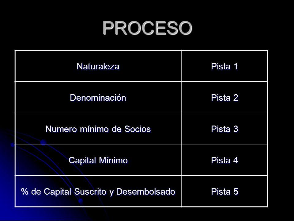 PROCESO Naturaleza Pista 1 Denominación Pista 2 Numero mínimo de Socios Pista 3 Capital Mínimo Pista 4 % de Capital Suscrito y Desembolsado Pista 5