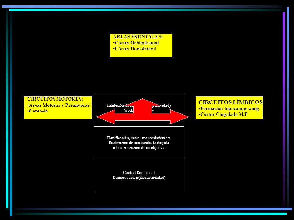 Inhibición de respuesta (Impulsividad) Working Memory Control atencional Planificación, inicio, mantenimiento y finalización de una conducta dirigida