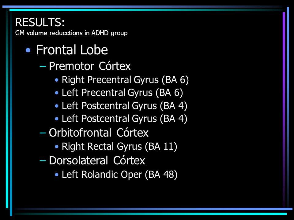 Frontal Lobe –Premotor Córtex Right Precentral Gyrus (BA 6) Left Precentral Gyrus (BA 6) Left Postcentral Gyrus (BA 4) –Orbitofrontal Córtex Right Rec