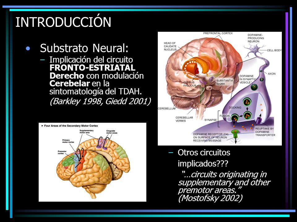 INTRODUCCIÓN Substrato Neural: –Implicación del circuito FRONTO-ESTRIATAL Derecho con modulación Cerebelar en la sintomatología del TDAH. (Barkley 199