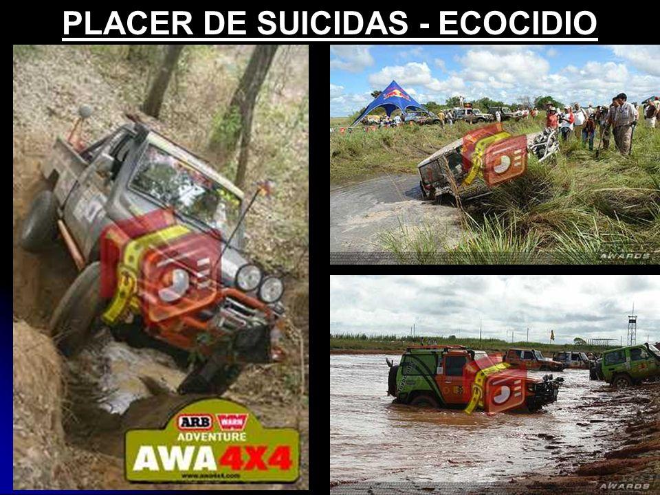 PLACER DE SUICIDAS - ECOCIDIO