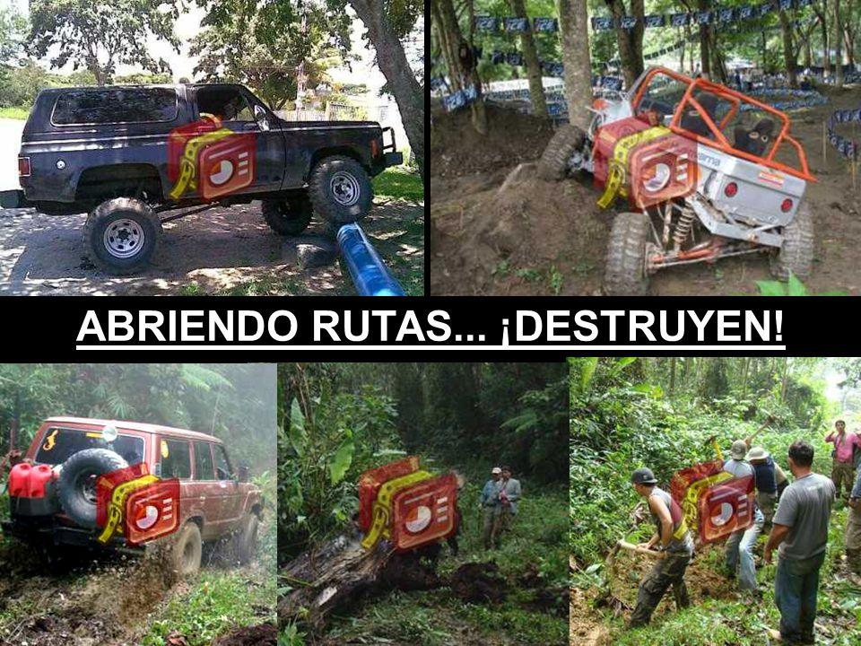 ABRIENDO RUTAS... ¡DESTRUYEN!