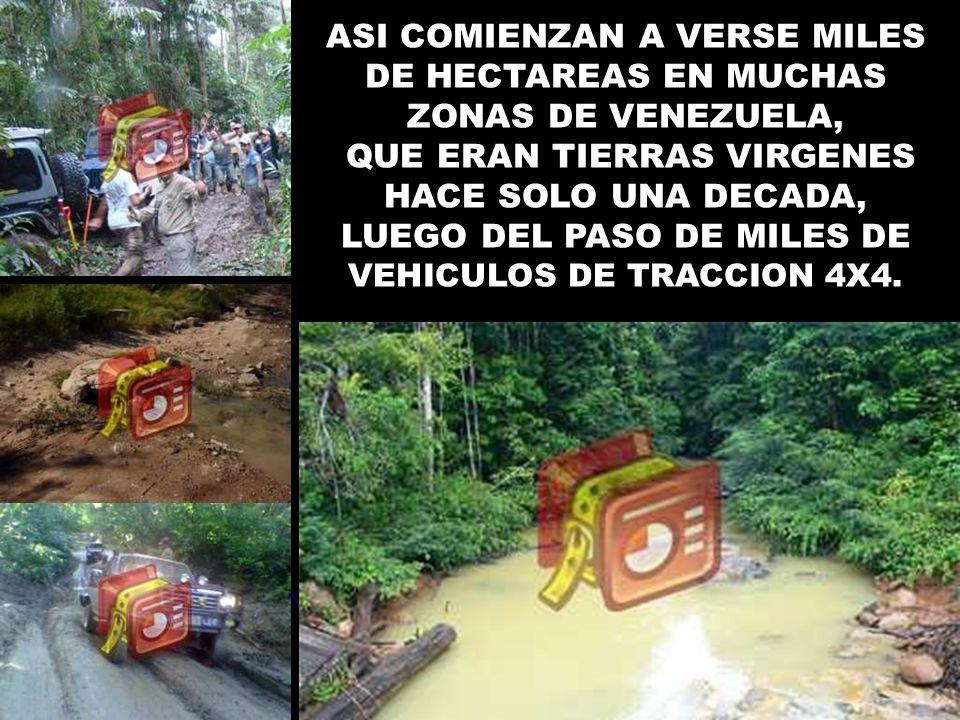 ASI COMIENZAN A VERSE MILES DE HECTAREAS EN MUCHAS ZONAS DE VENEZUELA, QUE ERAN TIERRAS VIRGENES HACE SOLO UNA DECADA, LUEGO DEL PASO DE MILES DE VEHI