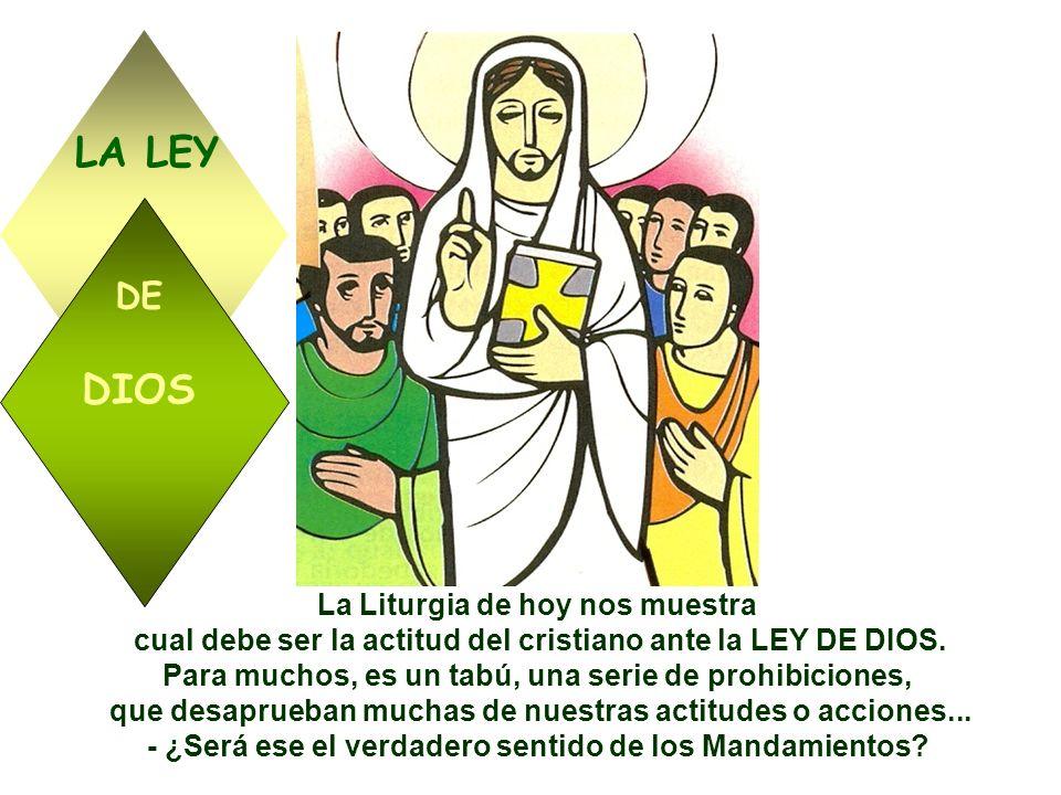 La Liturgia de hoy nos muestra cual debe ser la actitud del cristiano ante la LEY DE DIOS.